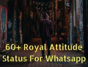 attitude feature