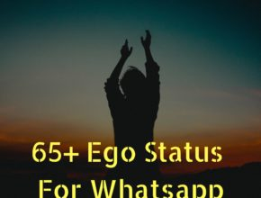 ego feature